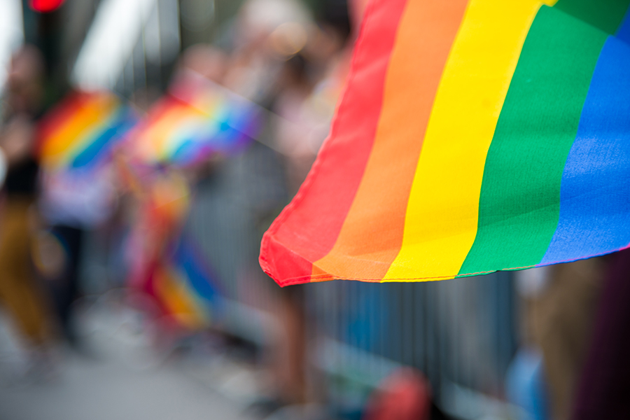 Picture of LGBTQ+ flag