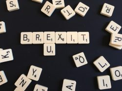 The United Kingdom – Free Trade Nation or Foolish Nation? Beyond the Limitations of the Brexit Debate