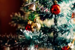 Christmas Tree Economies or Fashions and Local Economic Development