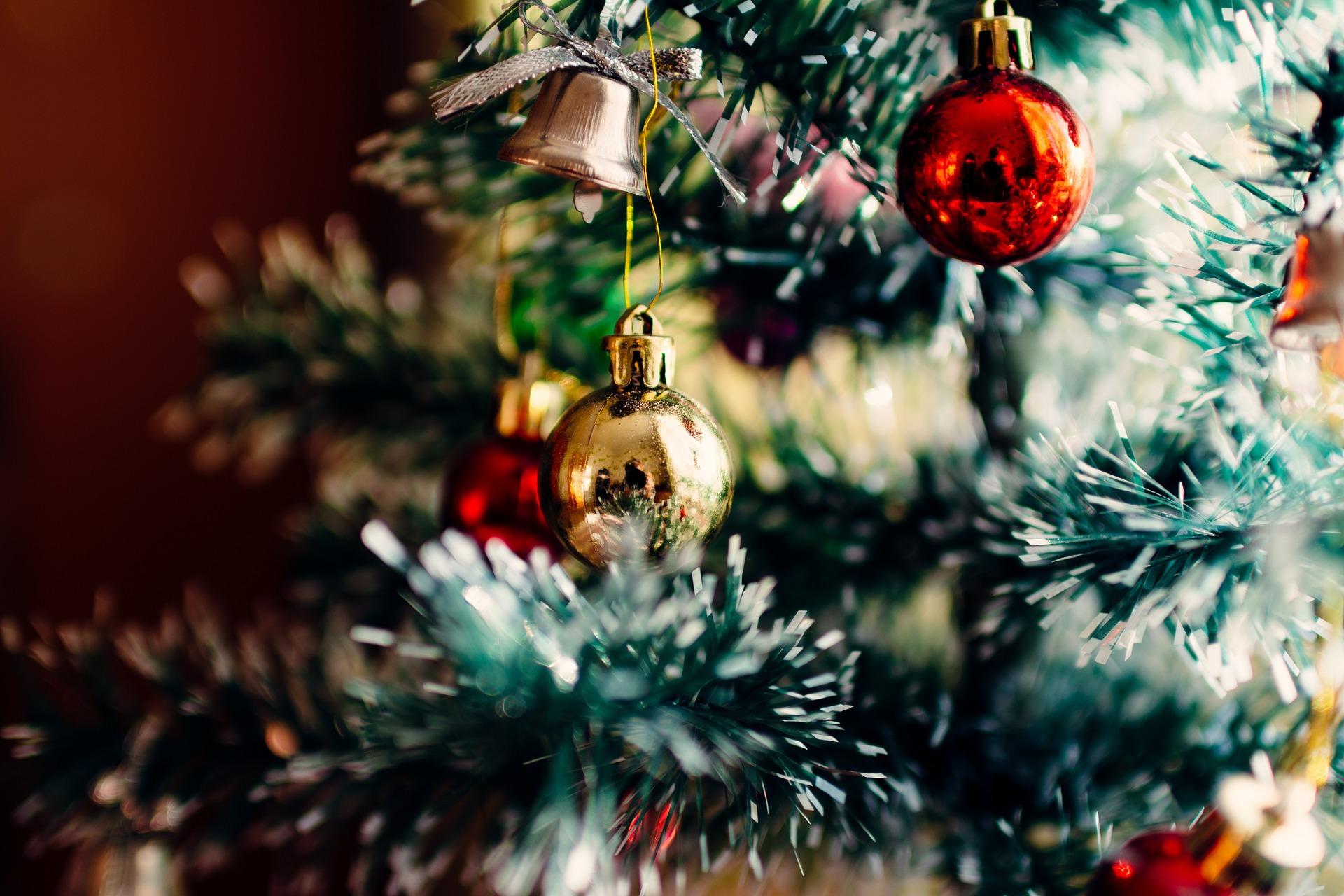 Christmas Tree Back.Christmas Tree Economies Or Fashions And Local Economic
