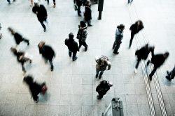 West Midlands socio-economic health check: Labour market