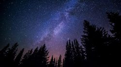 Serendipity: Is the Answer to the Productivity Problem Written in the Stars?