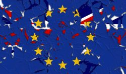Never-exit Brexit and Remaining within the European Union: Half-Hearted versus Enthusiastic Remainers