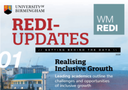 REDI Updates 1: Director's Welcome – Regional Research Collaboration Will Be Crucial to Improve Our Economy and Society