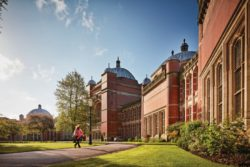 Civic Engagement, Universities and Inclusive Growth: Responding to COVID-19
