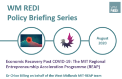Policy Briefing – Economic Recovery Post COVID-19: The MIT Regional Entrepreneurship Acceleration Programme (REAP)