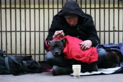 The Impact of COVID-19 on Homelessness