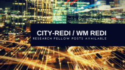 Research Fellow Posts Available at City-REDI / WM REDI