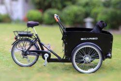 E-Cargo Bikes – The Future of 'Last-Mile' Logistics?