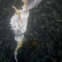 Distance-reading the feminine landscapes of The Awakening