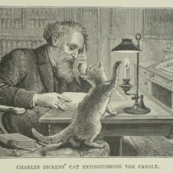 """Mew says the cat…Bow-wow-wow says the dog"": Which animal did Dickens prefer?"