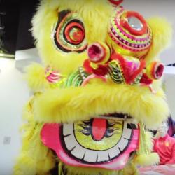 Chinese/Lunar New Year Celebration Videos