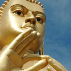 Buddha's birthday 30 April