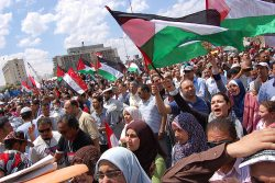 Effects of the Arab Spring