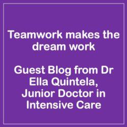 Guest Blog – Teamwork makes the dream work