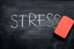 Mental Health Awareness Week: address your stress