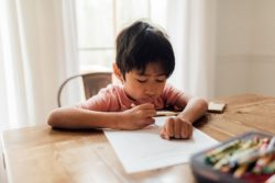 Home education: a better choice or the destruction of socialisation?
