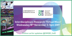 Poster for SMQB networking event on Nov 18th, 2020