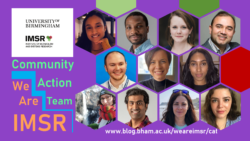 Introducing IMSR's Community Action Team!