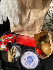 Image of a school activity pack featuring a petri dish, paper collage of cell components, fruit, gloves and sweets. These items are used by children involved with IMSR's school workshops